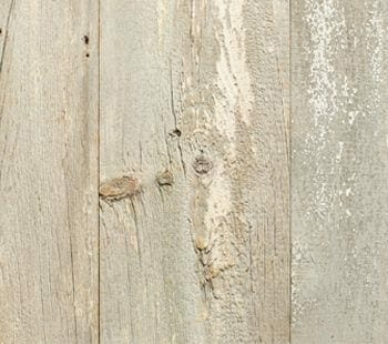 wide plank white pine paneling