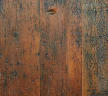 Footworn Pumpkin Pine