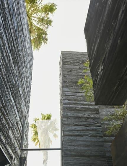 mtn mushroom wood exterior