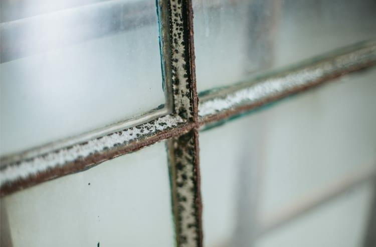 six-pane factory window